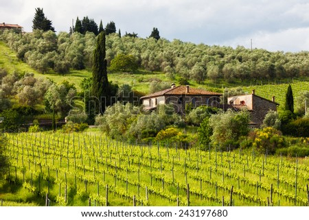Summer rural landscape with vineyards and the house in Tuscany, Italy - stock photo