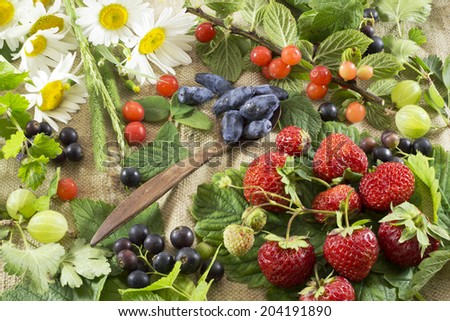 Summer still life with berries and flowers 2 - stock photo