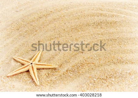Summer. Summer background. Summer accessories, Summer concept . Starfish with sand as background. Summer frame. - stock photo