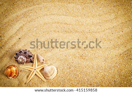 Summer. Summer background. Summer concept . Summer, sea shells with sand as background. Summer frame. - stock photo