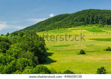 Summer, sunny day, the green slopes of the mountains on the background of blue sky.
