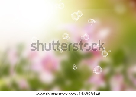 Summer sunny nature blur.Abstract background