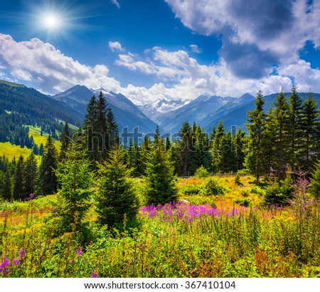 Summer sunny scene in the valley of Speicher Durlassboden lake in the Austrian Alps. View from Gerlos pass, Austria, Europe. - stock photo