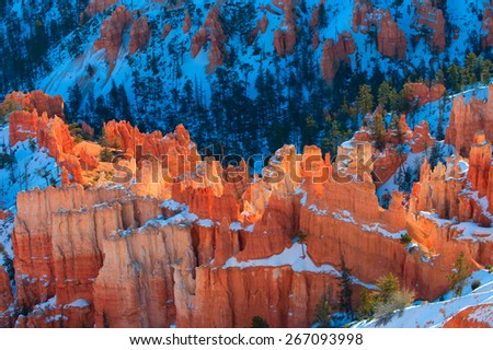 Summer sunrise in Bryce Canyon, Utah, USA. - stock photo