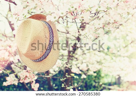 Summer sunrise or sunset background.  with straw-hat - stock photo
