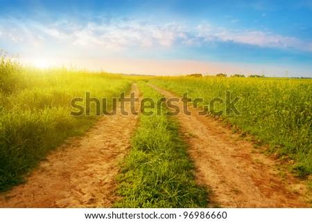 Summer sunrise over rural road. - stock photo