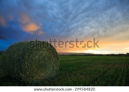 Summer Sunset - stock photo