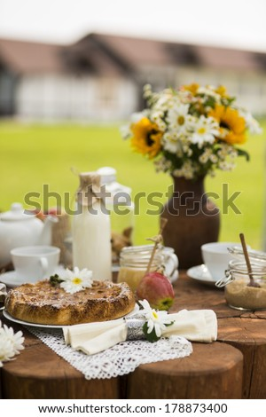 summer tea table - stock photo