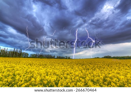 Summer thunderstorm over the rapeseed field in Poland - stock photo