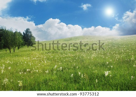 Summer time in the Carpathian mountains, Romania. - stock photo