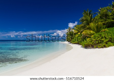 Summer travel tropical beach landscape. Blue sky with clouds and green palm trees and blue sea. Travel holiday vacation summer beach background concept. Maldives beach landscape seascape