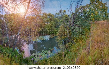 Summer twilight panorama with the small forest river - stock photo