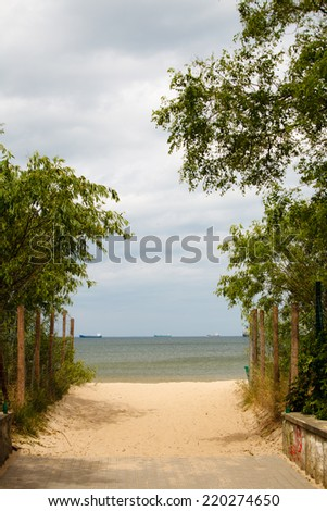 Summer vacation and resort. Empty entrance with green leaves to a sandy beach. Seascape.
