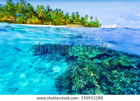 Summer vacation concept, beautiful underwater nature in Indian ocean, exotic island with tropical trees, wonderful landscape of Maldives - stock photo