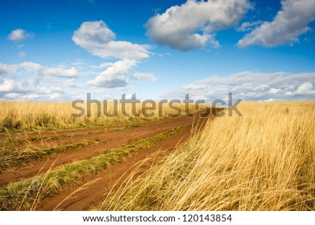 Summer view of golden grass,rural road and blue sky - stock photo
