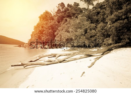 Summer vintage of tropical beach of Andaman sea  in Thailand. Like island. - stock photo