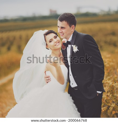 Summer wedding. Young newlywed couple in garden. - stock photo