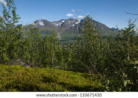 summerpicture of mountain in northsweden place, ritsem. - stock photo