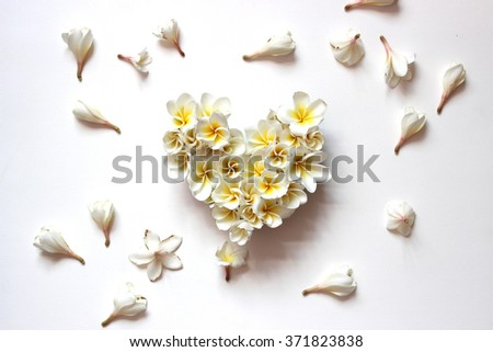 Summers floral heart with flowers, floral heart with Frangipani on white backgrounds, light soft tone and blur, valentines day card concept.