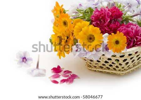 Summers fresh flowers in a basket on white - love postcard concept.