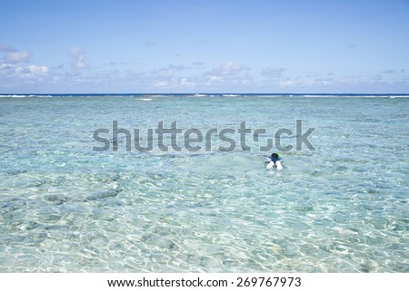 Summertime at the beach. beautiful beach and tropical sea.