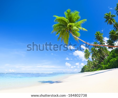 Summertime at Tropical Beach - stock photo