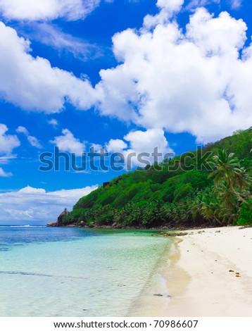 Summertime Jungle Dream - stock photo