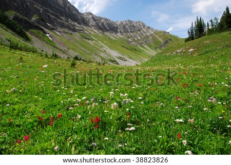 Summit view of mountain slopes and meadows on the top of mountain indefatigable, kananaskis country, Alberta, Canada - stock photo