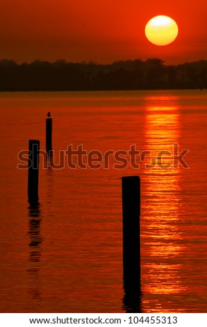 Sun about to set on the Indian River in Delaware with pilings and seagull in foreground