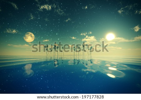 sun and moon behind island with coconut palms toned image - stock photo