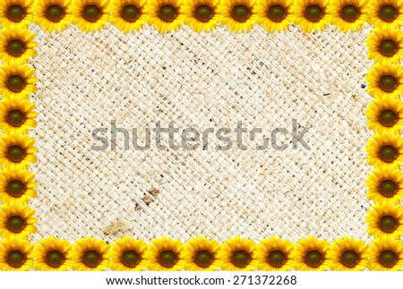 Sun flowers background with Natural burlap hessian sacking - stock photo