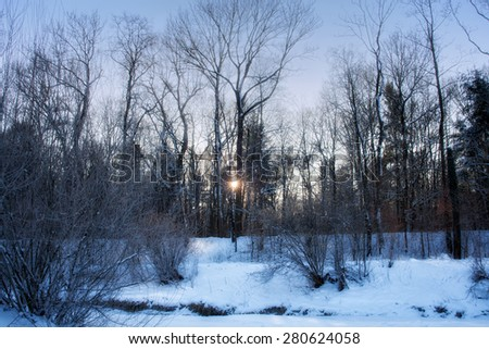 Sun in winter forest. Winter landscape. Winter wonderland. Winter background. - stock photo