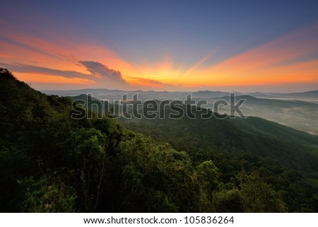 Sun is rising over forrest - stock photo