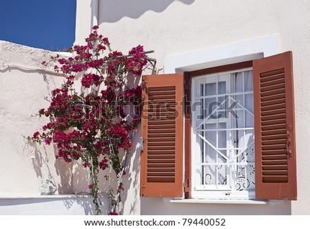 Sun on rustic window in Mediteranean style decorate with climbing Bougainvillea. - stock photo