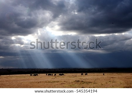Sun peaking out from dark clouds, landscape in africa during rainy season, Kenya