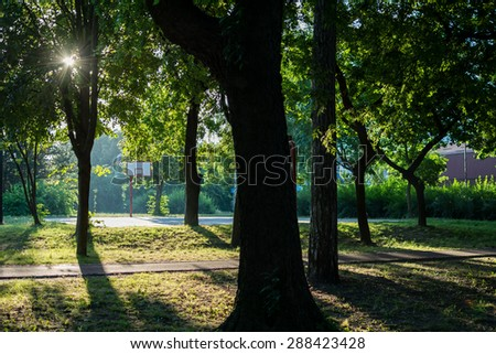 Sun photographed in early morning. Photo was taken around 6am, in park Dudova forest. In the background is basketball court, surrounded by trees. Light in the left corner is deliberately lighter. - stock photo