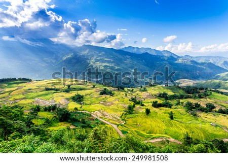 Sun rays over ripen rice terraces of the H'mong minority people in Y Ty, Lao Cai, Vietnam.  - stock photo