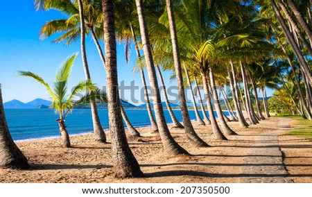 Sun rise at a beautiful tropical beach with palm trees. - stock photo