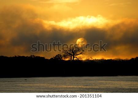 Sun rise over Amazon River near Manaus, Amazonas, Brazil - stock photo