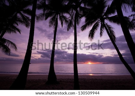 Sun rising above the ocean with palm trees in foreground - stock photo