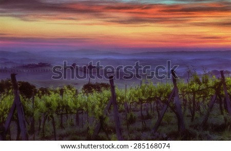 Sun Rising Over a Vineyard in Tuscany, Italy - stock photo
