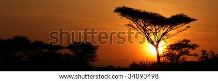 Sun Setting over Serengeti Wildlife Conservation Area, Safari, Tanzania, East Africa - stock photo