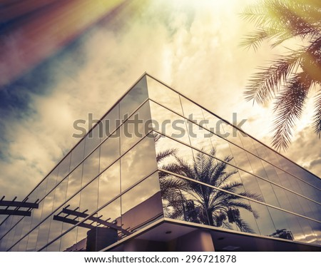 Sun shining brightly on window of office with palm tree reflecting in glass - stock photo