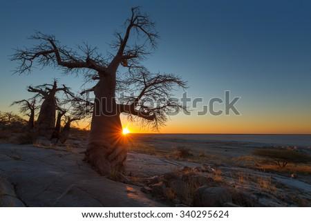 Sun starburst at Kubu Island - stock photo