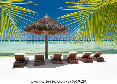 Sun umbrella and beach beds on tropical coastline through palm tree leafs