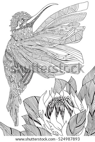 Artistic Bird And Protea Flower In Zentangle Style Coloring Book Page For Adult