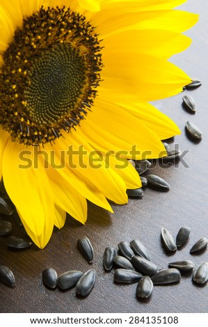 Sunflower and seeds close up on wooden background - stock photo