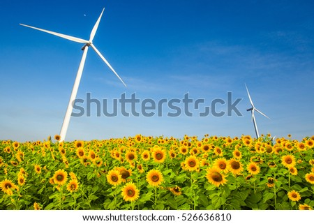 sunflower and wind turbine generator
