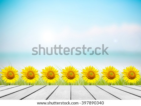 Sunflower daytime with sunlight. White old wood floor with abstract blurred on vacation summer ocean beach with green grass background. Blue water and sky bright. Focus to table top in the foreground. - stock photo