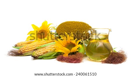 sunflower oil, sunflower and corn on the cob isolated on white background. horizontal photo.